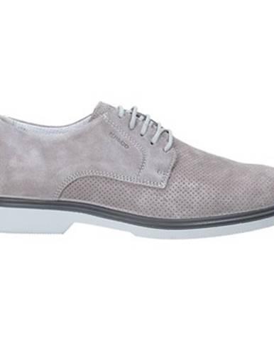 Topánky IGI CO