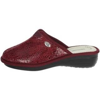 Papuče Sanycom  165