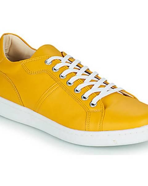 Žlté tenisky André