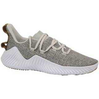 Fitness adidas  Alphabounce Trainer
